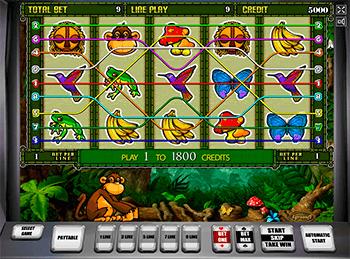 Игровой автомат Crazy Monkey 2 - фото № 1