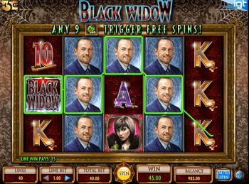 Игровой автомат Black Widow - фото № 2